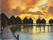 beach resort sunset wall mural