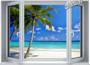 tropical ocean window mural