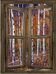 wilderness cabin window mural