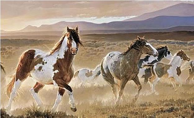 Desert Horse Wall Mural HJ6717M by York Wallcoverings